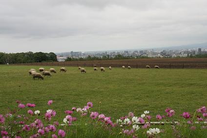 夏休み北海道 036-1.jpg